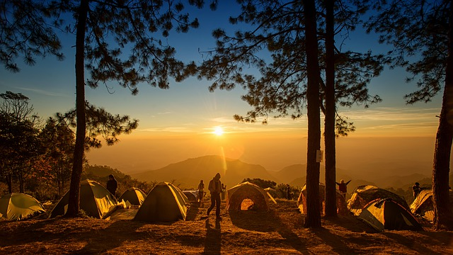 táboření v lese
